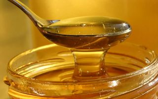 Как приготовить медовую брагу для самогона