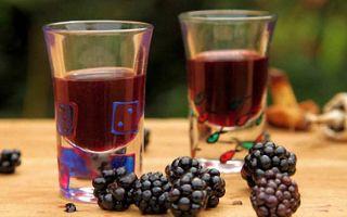 Вино из ежевики в домашних условиях простой рецепт