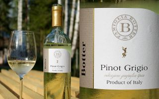 Вино Pinot Grigio — популярный напиток из Италии