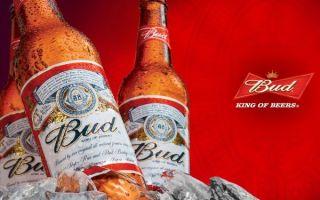Пиво Бад (Bud)