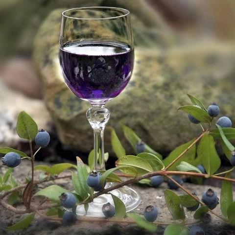 Вино из ирги в домашних условиях простой рецепт