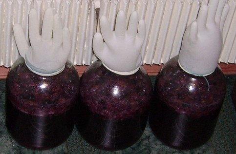 Вино из калины в домашних условиях простой рецепт, вино из калины красной в домашних условиях рецепт