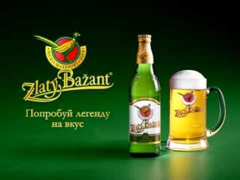 пиво Zlaty Bazant, пиво Златый Базант, Златый Базант темное, Златый Базант безалкогольное, Златый Базант с лимоном, пиво Златый Базант отзывы
