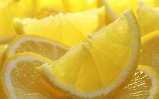 Брага из лимона для самогона