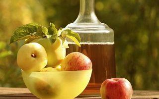 Яблочное вино рецепт приготовления в домашних условиях