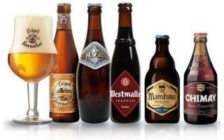 Разновидности бельгийского пива