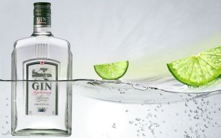 Пять интересных способов пить Джин