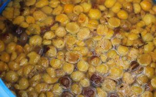 Рецепт фруктовой браги для самогона