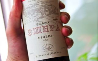 Вино Эшера — красное полусухое вино Абхазии