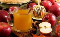 Яблочный сидр в домашних условиях простой рецепт